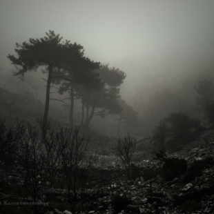 in the mist 2/3 (Chios isl. mountains)